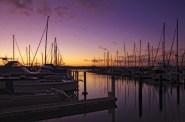 auckland-autumn-sky-purple