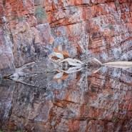 northern territory ormiston gorge