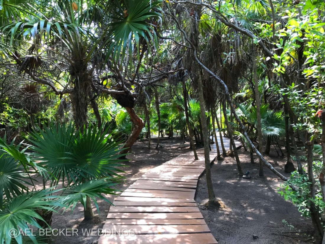 The mangrove path to Mukan Resort, Tulum, Mexico. Ael Becker Weddings