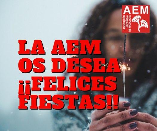 AEM XMAS