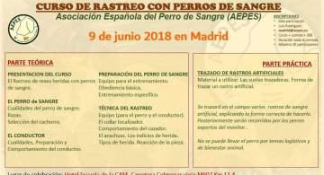 Curso de rastreo Madrid
