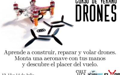 Aprende a volar en el curso de verano de drones de la UMH