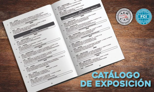 CATALOGO  PDF JULIO 2017 QUITO