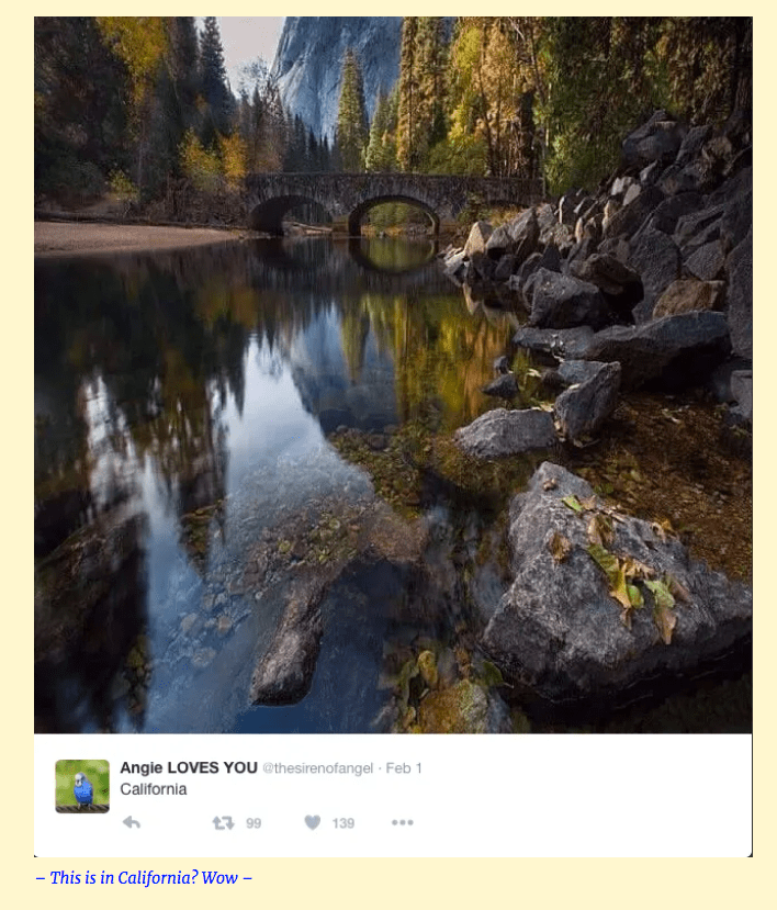 """California Bridge + Stream Scene"""