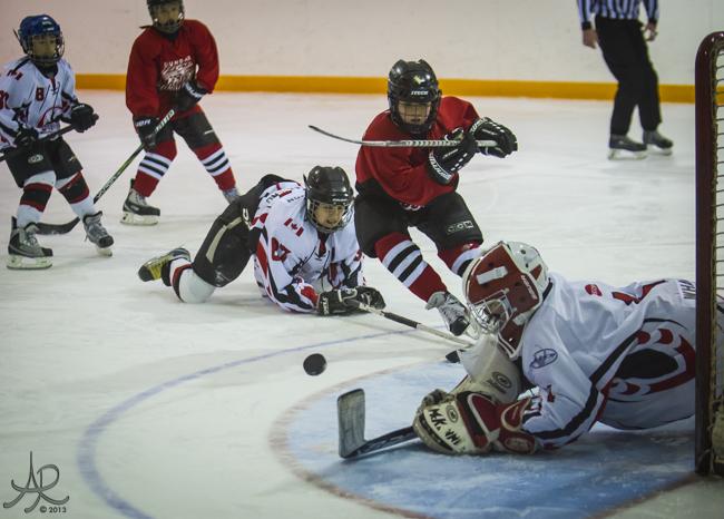 Dundas_Select_Hockey