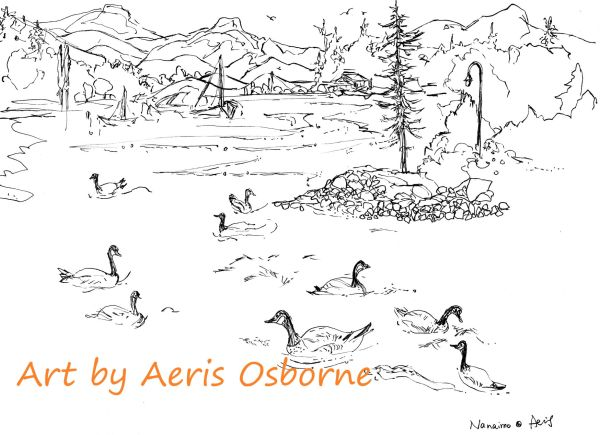 Canadian Geese Coloring