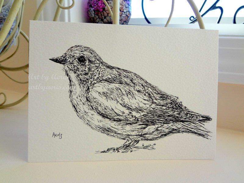 Bird Art Drawing