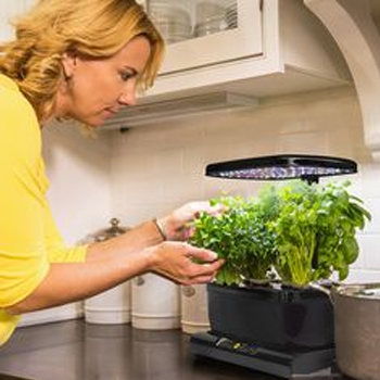 Is Aerogarden Safe For Use In General?