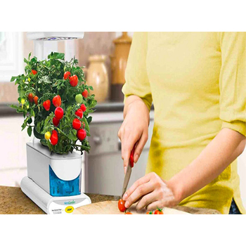 is aerogarden plant safe