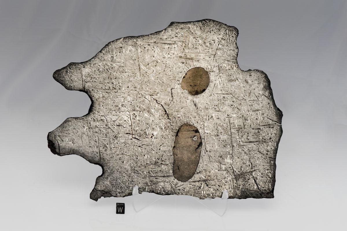 tambo-1648-ii