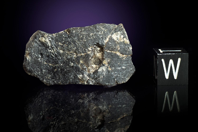 Darwin Glass 8.1 Grams