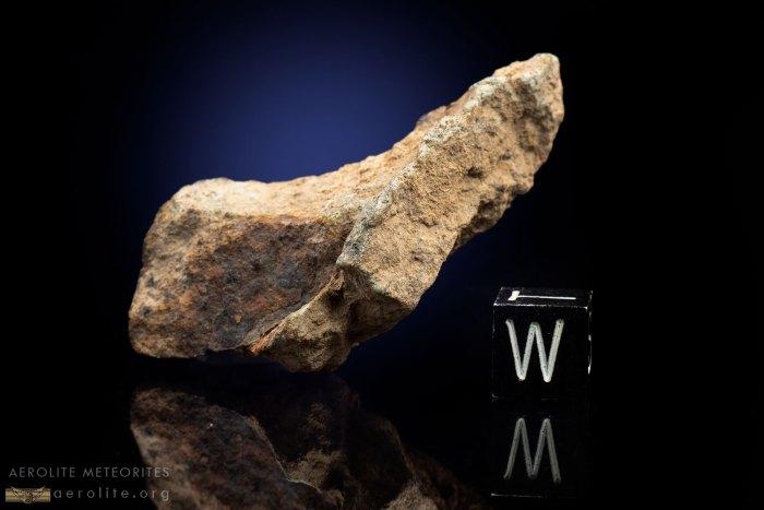 Gold Basin 22.4 Grams
