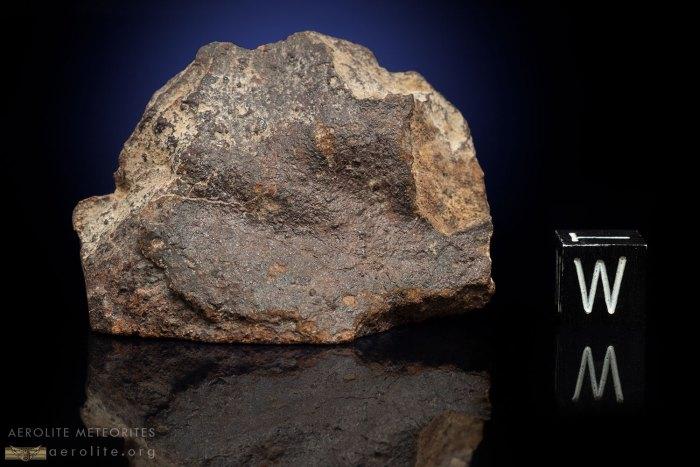 Gold Basin 53.3 Grams
