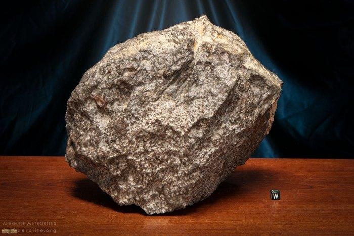 Stone Meteorite 869-13.2k-1