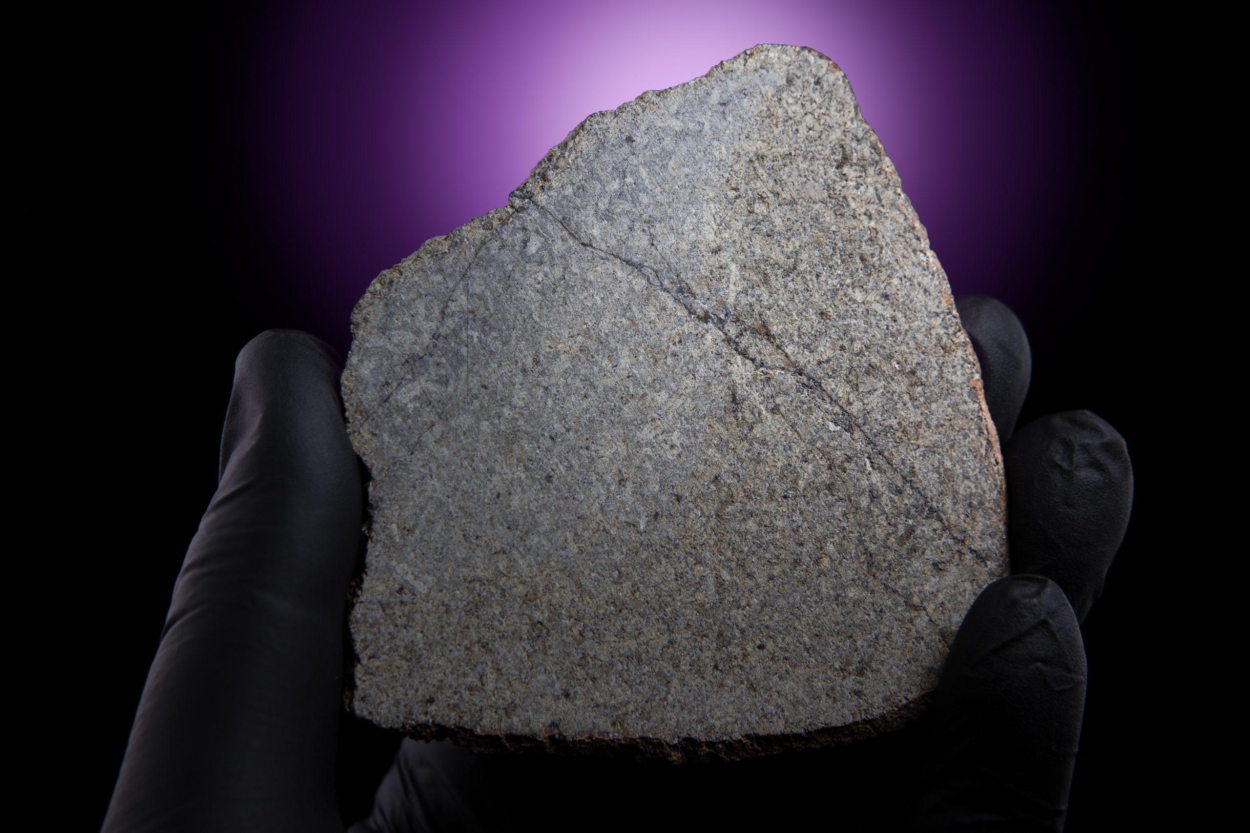 martian meteorite full slice