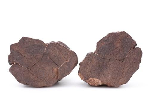 al haggounia fossil meteorite 109