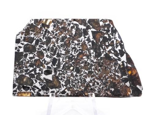 seymchan pallasite meteorite 24