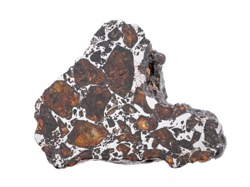 pallasite meteorite 22g