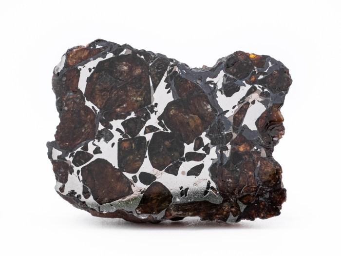 pallasite meteorite end cut