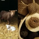 11883_Sheep-Yarn-Antler-Pic.jpg