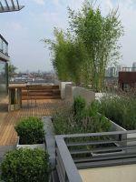 Natürlicher sichtschutz terrasse