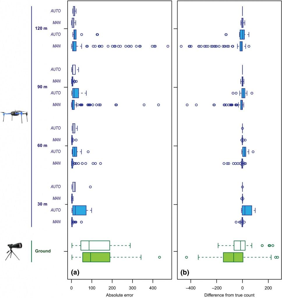 Comparaison des précision des deux méthodes par drone et par comptage humain au sol
