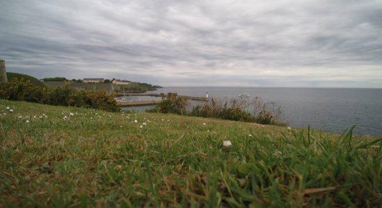 Ramonette à Belle-île-en-mer