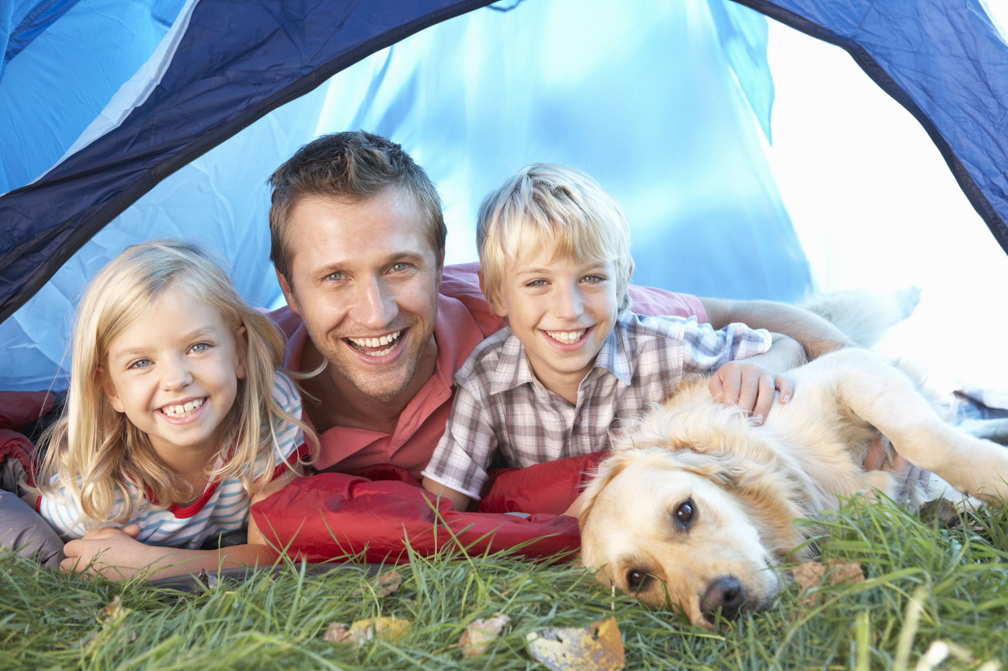 camp with your dog