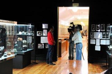 web-r-Museu-Geológico-Lisboa-Leopardo-FTR_3042