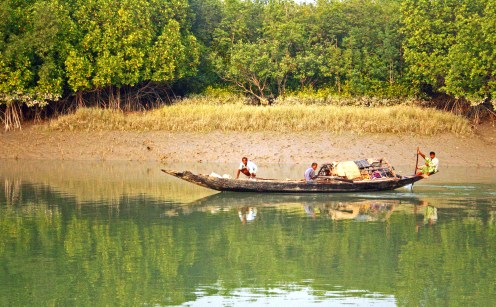 "In the land of tigers - Sunderbans - many bravehearts spend days and nights together in their little ""dinghis"" (boats) in the hope of their next catch and family dinner"