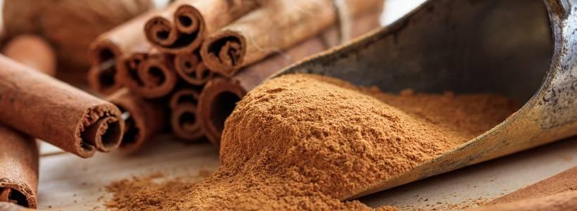 Zimt – Supplement & Nahrungsdroge zur Blutzuckerkontrolle