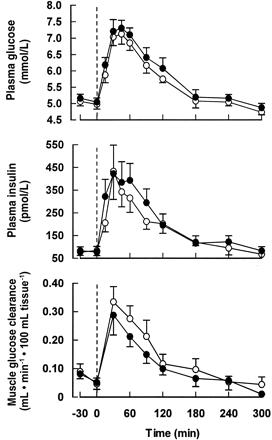 4 Wochen 30g resistente Stärke: Auswirkungen auf Blutzucker, Insulinausschüttung und Glukoseaufnahme der Muskulatur. Weiße Kreise = RS-Gruppe; Schwarze Kreise = Placebo Gruppe. Blutzucker- und Insulinkonzentration sind in der RS-Gruppe niedriger; die Aufnahme von Zucker in der Muskulatur ist erhöht.