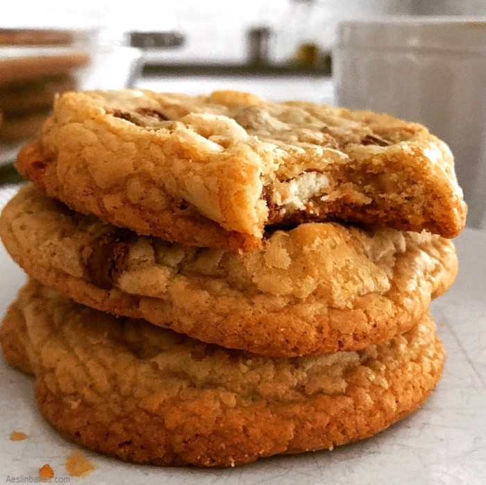 Three Soft & Chewy Chocolate Chip Cookies close