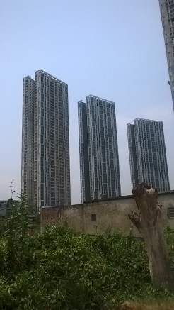 Figure 5. The Gated Large-scale Residential Complex
