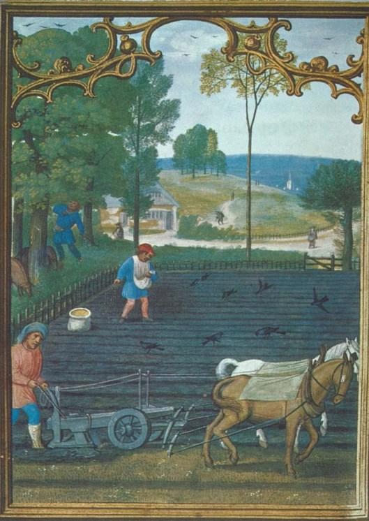 Plow_medieval_farm