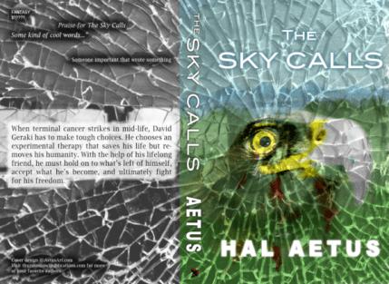 The Sky Calls Cover
