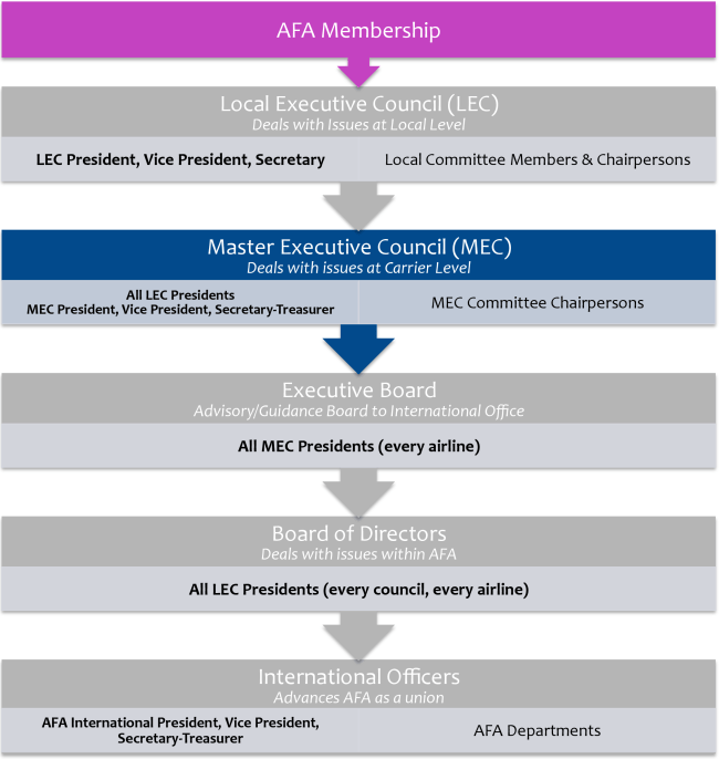AFA Structure Diagram MEC