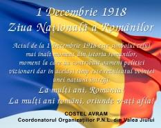 1 decembrie PNL