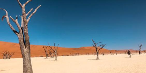 Drought-2_564x282