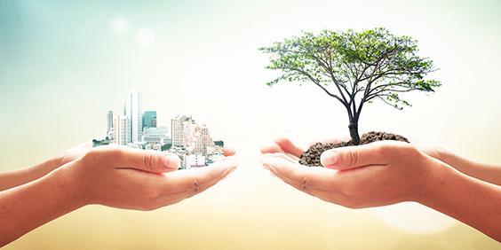 UN-PSI-sustainable-insurance_shutterstock_323393219