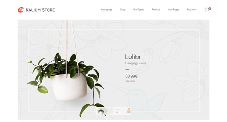 theme-wordpress-ecommerce-kalium