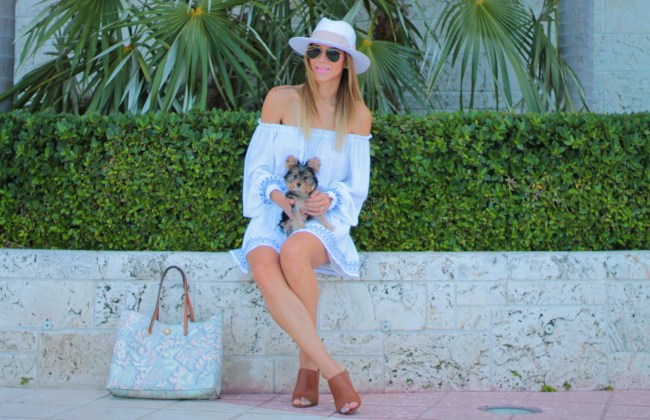 amanda tur from a fancy affair lifestyle and fashion blogger wearing a blue off the shoulder summer dress in white with blue trimming perfect for a miami beach boat day outing with teacup yorkie 4 months penelope tur amanda tur