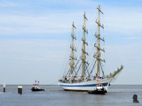 tallship race harlingen 031
