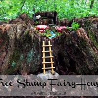 Tree Stump Fairy House DIY