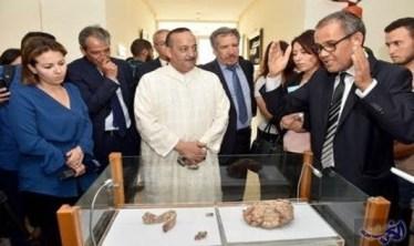 almaghribtodayالبقايا اكتشاف جُمجمة جبل إيغود في المغرب يقلب كتابة تاريخ البشرية أدب و فنون
