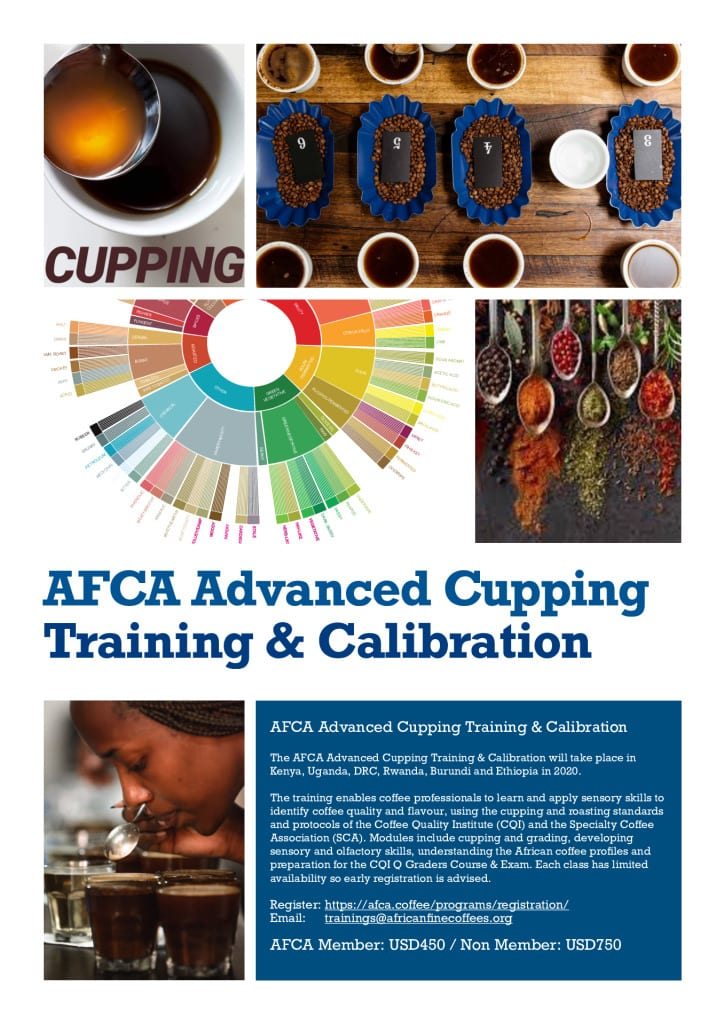 thumbnail of 1. AFCA Advanced Cupping Training & Calibration Flyer