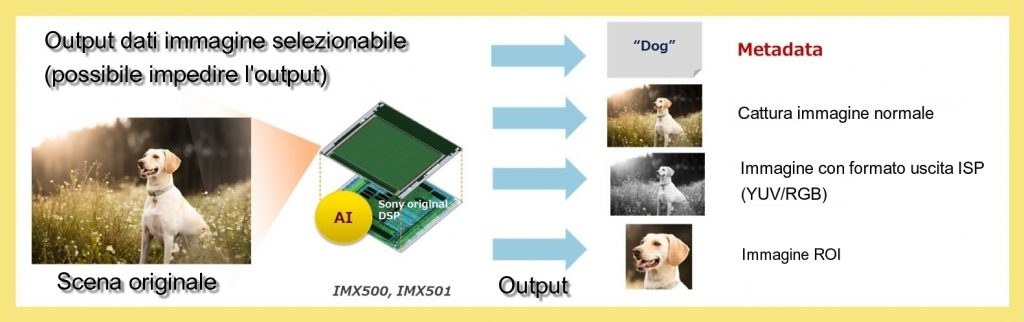 sensori d'immagine intelligenti
