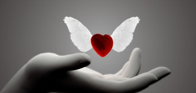 الحب والحياة