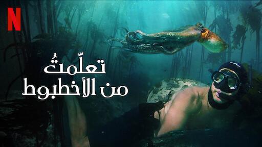 فيلم الوثائقي My Octopus Teacher (2020) تعلمت من الأخطبوط مترجم