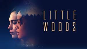 فيلم الجريمة والدراما Little Woods (2018) مترجم